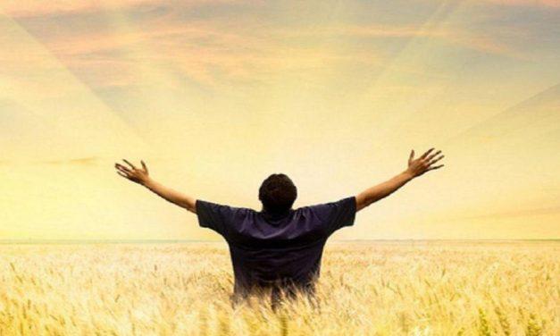 Perpétua alegria
